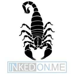 Scorpion 08