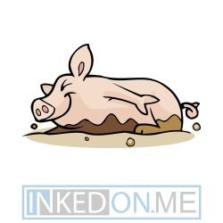 Baby Pig Lying In Mud